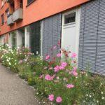 Stadtgärten Bad Homburg Quartiersplatz