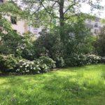 Stadtgärten Bad Homburg Waldpark